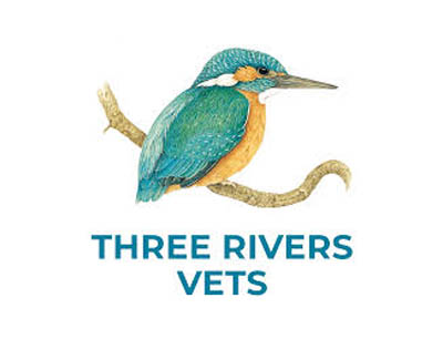 Three Rivers Vets